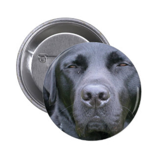 Black Labrador Retriever Dog Round Button