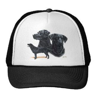 Black Labrador Retriever Mesh Hat