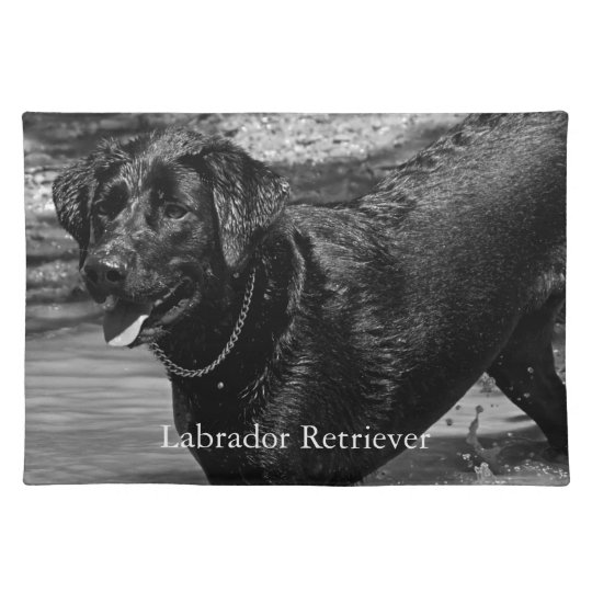 Black Labrador Retriever in Water Placemat
