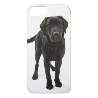 Black labrador retriever iPhone 8/7 case