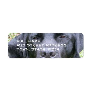 Black Labrador Retriever Mailing Label Return Address Label