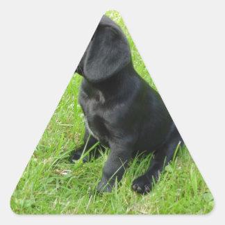Black Labrador Retriever On Grass Triangle Sticker