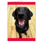 Black Labrador Retriever Puppy  Dog Blank Notecard