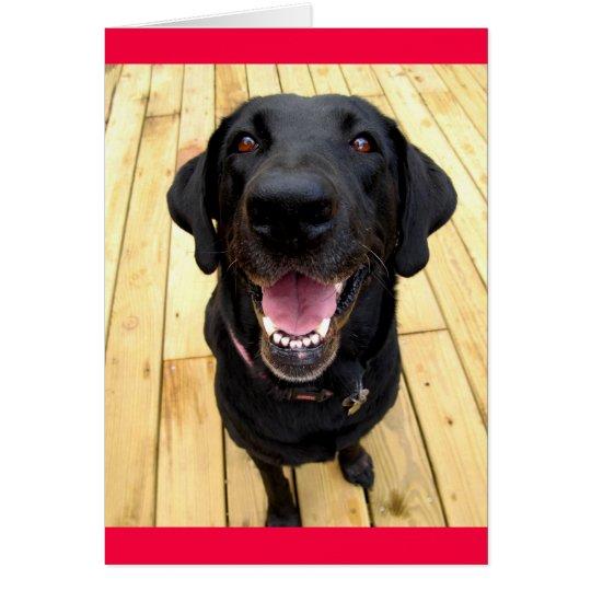 Black Labrador Retriever Puppy Dog Blank Notecard