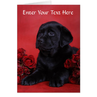 Black Labrador Retriever Puppy Dog Greeting Card