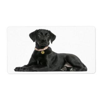 Black Labrador Retriever  Puppy Dog Sticker Shipping Label