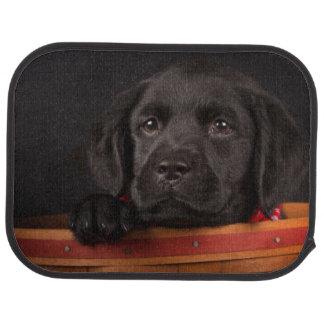 Black labrador retriever puppy in a basket car mat