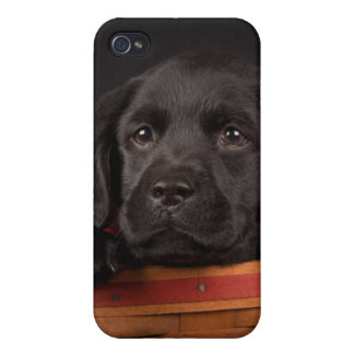 Black labrador retriever puppy in a basket case for iPhone 4