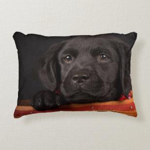 Sleeping Labrador Puppy Throw Pillow