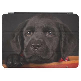 Black labrador retriever puppy in a basket iPad air cover