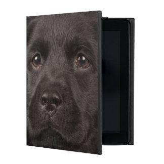 Black labrador retriever puppy in a basket iPad case