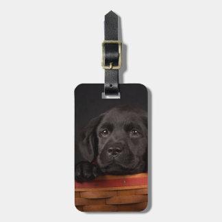 Black labrador retriever puppy in a basket luggage tag