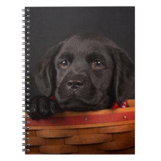 Black labrador retriever puppy in a basket notebook