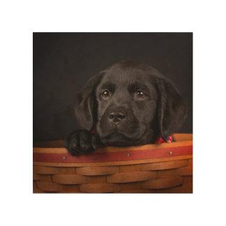 Black labrador retriever puppy in a basket wood print