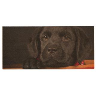 Black labrador retriever puppy in a basket wood USB flash drive