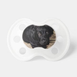 Black Labrador Retriever Puppy on Wood Baby Pacifier
