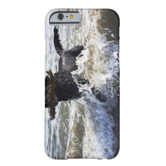 Black Labrador retriever running through surf, Barely There iPhone 6 Case