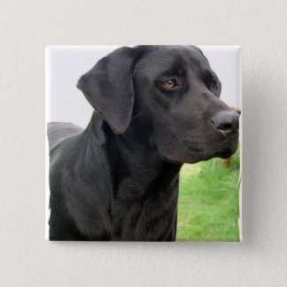 Black Labrador Retriever Square Pin