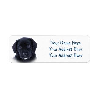 Black Labrador - Snow Puppy Return Address Label