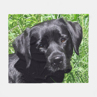 Black Labrador - Spring Day Fleece Blanket