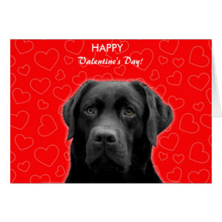 Black Labrador Wishing Happy Valentine's day Card