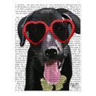 Black Labrador With Heart Sunglasses Postcard
