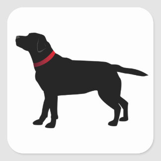 Black Labrador with Red Collar stickers
