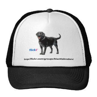 Black Labs Group Hat