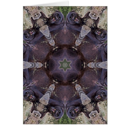 Black Leopard Kaleidoscope Card