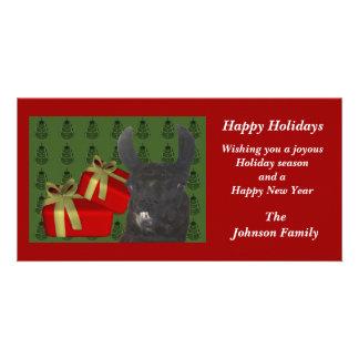 Black Llama Farm Animal Christmas Holiday Card Photo Card