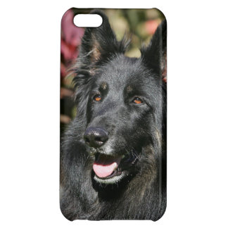 Black Long Haired German Shepherd iPhone 5C Cases