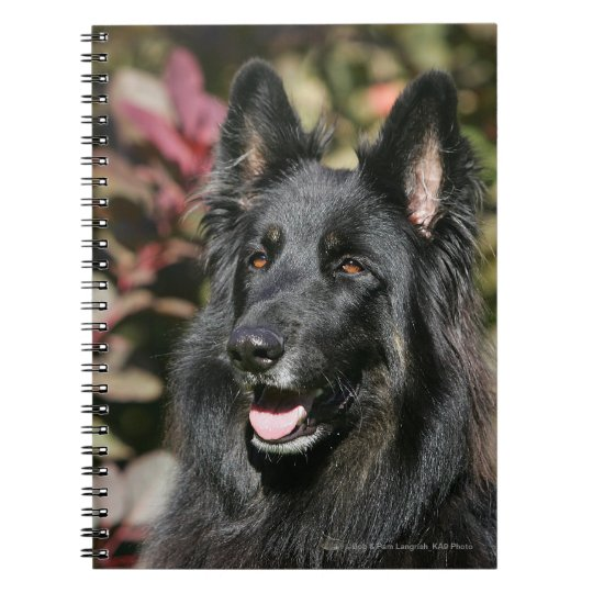 Black Long Haired German Shepherd Notebook