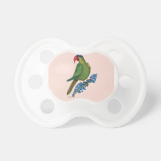 black lored parrot, tony fernandes baby pacifiers