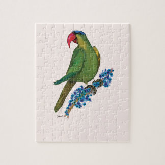 black lored parrot, tony fernandes jigsaw puzzle