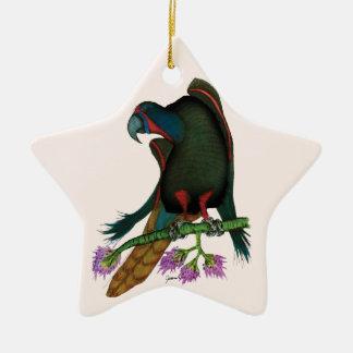 black lory parrot, tony fernandes ceramic star decoration