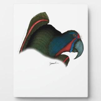 black lory parrot, tony fernandes plaque