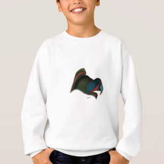 black lory parrot, tony fernandes sweatshirt