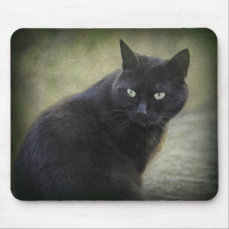 Black male cat with green eyes mouse mat