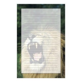 Black-maned male African lion yawning Stationery