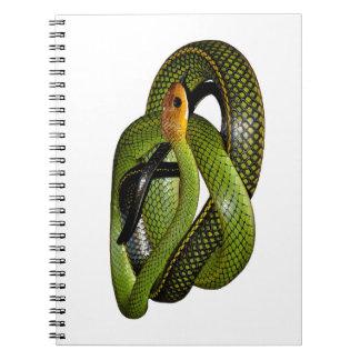 Black-margined Ratsnake or Green rat snake Notebooks