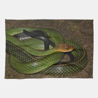 Black-margined Ratsnake or Green rat snake Tea Towel