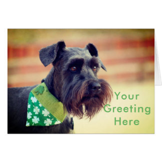 Black Miniature Schnauzer Card