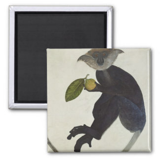 Black Monkey Square Magnet