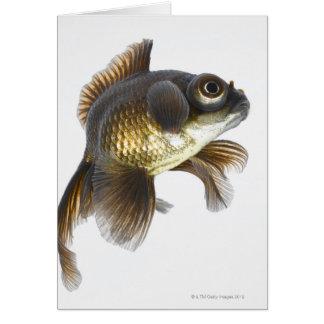 Black moor goldfish (Carassius auratus) 2 Card