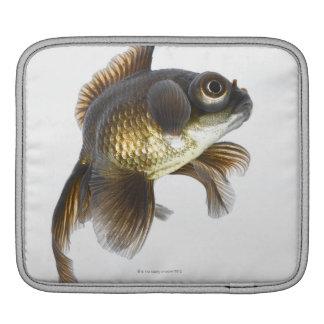 Black moor goldfish (Carassius auratus) 2 iPad Sleeve