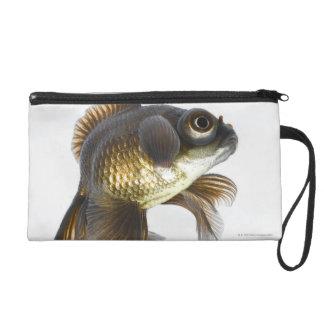 Black moor goldfish (Carassius auratus) 2 Wristlet