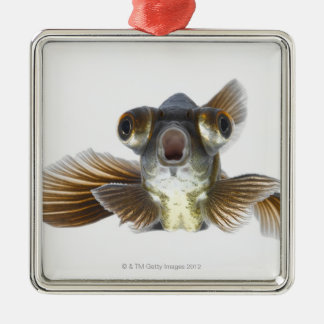 Black moor goldfish (Carassius auratus) Christmas Ornament