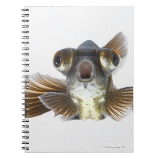 Black moor goldfish (Carassius auratus) Notebooks
