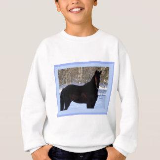 Black Morgan horse in snow Sweatshirt