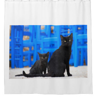 Black Mother Cat and Baby Kitten Shower Curtain